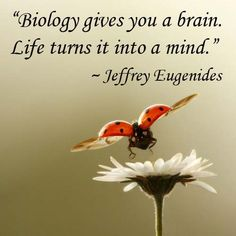 """Biology gives you a brain. Life turns it into a mind."" — Jeffrey Eugenides"
