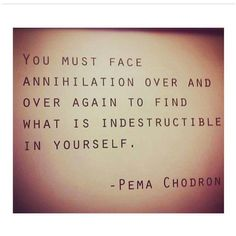 """You must face annihilation over and over again to find what is indestructible in yourself."" - Pema Chödron"