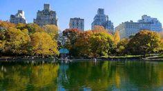 #newyork #centralpark #amazingplace