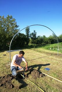 Polytunnel construction from a customer's perspective - Part 2: Hoops