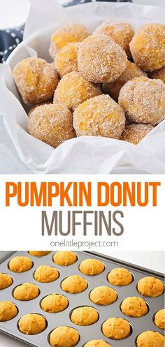 These bite-sized pumpkin donut muffins are the perfect treat for fall! They're so light and tender, and rolled in spiced sugar for extra deliciousness! Donut Muffins, Pumpkin Spice Muffins, Pumpkin Bread, Pumpkin Recipes, Cookie Recipes, Snack Recipes, Dessert Recipes, Snacks, Chocolate Chip Mug Cake