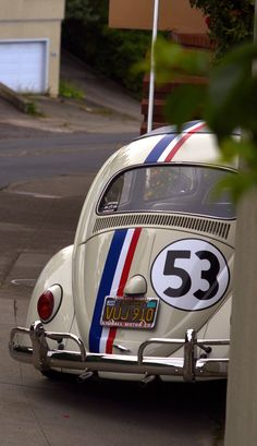 Peeking Herbie