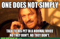 I so read the last part in the high pitched pet voice! Hahahaha!!