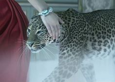 SPARKLE WITH CARTIER...AT THE WAVE CENTER...