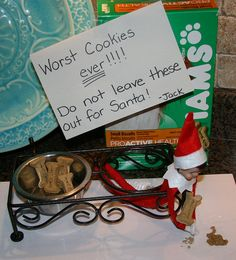 Elf on the Shelf mistaking dog treats for Santa's cookies.  LOL!