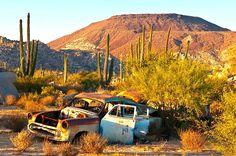 Catavina desert. Baja California, Mexico.