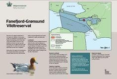Fanefjord-Grønsund Vildtreservat. Kilde: Naturstyrelsen, http://naturstyrelsen.dk/media/163850/fanefjord_160913_godkendt.pdf