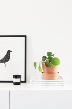Blog über Fotografie, Wohndesign und das alltäglich Schöne