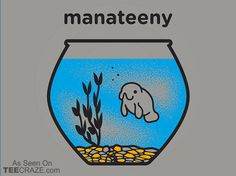 Manateeny T-Shirt - https://teecraze.com/manateeny-t-shirt/ -  Designed by Snorg Tees   You May Also Like                          Jessica Rabbit T-Shirt                                       Living The Dream T-Shirt