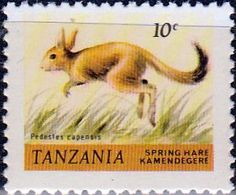 Tanzania 1980 Wildlife Hare Fine Used SG 307 Scott 161 Other Tanzania Stamps HERE