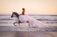 Horses » Sierra Luna Photography