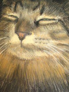 Items similar to Custom Pet Portrait, Pastel original painting of your pet, Maine Coon Cat, gift, keepsake memory on Etsy Cat Sketch, Maine Coon Cats, Art Studies, Pet Portraits, Original Paintings, Art Pieces, Sketches, Fantasy, The Originals