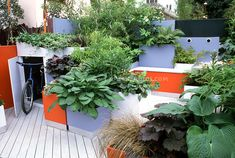 Rooftop city storage shed for bike bicycle, garbage, etc. cleverly hidden in colorful deck with movable planter boxes, container raised bed pot planters, small garden urban patio landscaping design using foliage plants hostas, heuchera, carex ornamental grass, ivy, bamboo, ferns, in orange and blue color tones