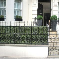 Add some privacy to your home with a beautiful artificial boxwood hedge