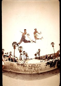 Scott Oster and Christian Hosoi / Skateboarding