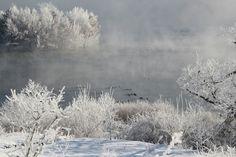 농원의 겨울 #성은농원 #진안마이산농부