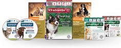 Packaging for Seresto® for cats, Seresto® for large dogs, Advantage Multi® for Cats (imidacloprid + moxidectin), K9 Advantix® II for large…