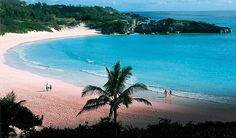 Bermuda - pink sand beaches  Bermuda has some magnificent large and small beaches. Beach sand is not volcanic but from finely pulverized remains of calcium carbonate shells and skeletons of invertebrates such as corals, clams, forams and other shells.