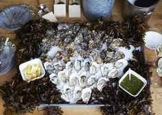 Sweetwater oysters from Hog Island, heaped high on a vintage metal tray filled with rock salt and adorned with seaweed