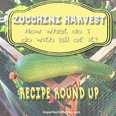 Great round up with a ton of zucchini recipes, because, let's be honest, sometimes we get more zucchini than we know what to do with.