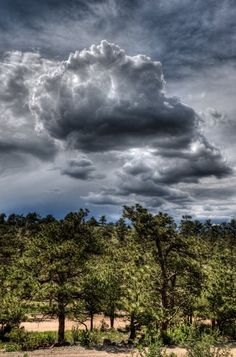 Photo 28 of Lionscrest Manor Project Wedding The Skies above Lyons Colorado Elegant Images Photography