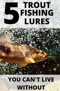 In all of my years of these are hands down the best for These five work well for all species of trout. You can fish them in lakes, river, streams, or ponds. Fish with confidence, this article will not steer wrong. Best Trout Lures, Trout Fishing Lures, Crappie Fishing Tips, Fishing Guide, Carp Fishing, Best Fishing, Fishing Tricks, Ice Fishing, Fishing Tackle