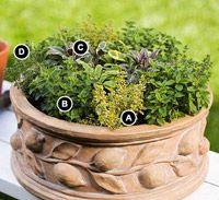Miniature Herb Garden