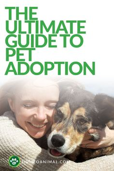 Here is the ultimate guide to pet adoption. Sneak preview will teach everything you need to know about pet adoption & will look at ways to simplify process