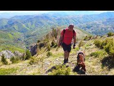 Dawn, Mountains, Travel, Viajes, Destinations, Traveling, Trips, Bergen