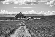 Old Abandoned Barn, 1st Road NW, Douglas County, Washington, 2013 | Click the picture above for information on purchasing a fine art photography wall print for your home. | #blackandwhite #rural