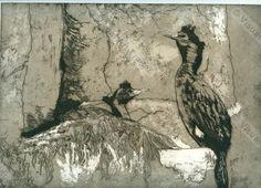 Cormorants in Alaska (etching); by Jenny Massiah