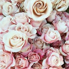 Roses win our hearts everytime! Like if you're a rose kind of girl too. Regram via @amyosabaevents & @fluttermag #roses #flowers #love #pink #florals