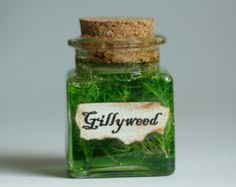 Gillyweed Harry Potter Potion Small Gift Under 10 Dollars or Kitschy Decoration Square Glass Bottle, Corked on Wanelo Potion Harry Potter, Theme Harry Potter, Harry Potter Room, Harry Potter Gifts, Harry Potter Bathroom, Hogwarts Christmas, Potion Bottle, Gifts Under 10, Teacher Favorite Things