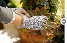 Protect your paws  These gorgeous gloves may look pretty, but they're no delicate flower. Reinforced fingertips, an over-the-wrist cuff and a good grip mean you can get down and dirty into your garden design without ruining your manicure. ethelgloves.com, $20.