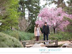 Japanese Gardens At Hermann Park