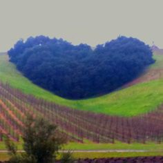 God's love all around everywhere in nature - in the Hills...