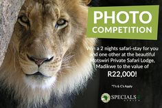 Thinking of an African safari adventure we take a close look at what we regard to be the top five African safari destinations for families. Competition Time, Photo Competition, Top 10 Image, Your Image, Private Safari, Amazing Nature Photos, House Photography, African Safari, Wildlife