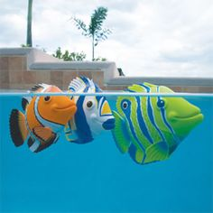 Rainbow Reef Mini Fish. Battery-powered fish that swim through the water! Fun pool toy for kids or great decor for your tropical pool party.