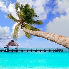 Cancun Travel Guide