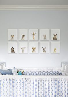 """Cute series of framed prints from """"The Animal Print Shop"""" by photographer Sharon Montrose"""