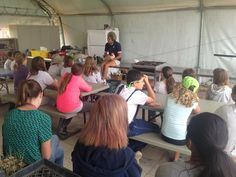 Animal Place's Rescue Ranch manager, Jan Galeazzi, talking with kids at Sonoma Humane Society's Forget Me Not Farm about chickens! The children helped to welcome 50 adoptable hens from our adoption center in Vacaville.