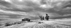 A Memory Of A Wheatfield by Allan Van Gasbeck.
