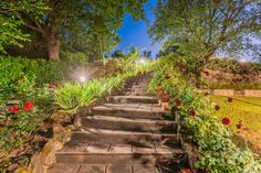 Can you picture yourself sweeping down these picture-perfect garden steps at Luna? The name of this wonderful stone farmhouse means 'tower to heaven', and from its beautiful position atop the hill of the tiny village of Ripoli you can enjoy outstanding views of the valley.