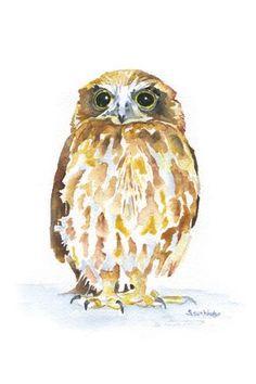 Burrowing Owl Giclee aquarelle 4 x 6 par SusanWindsor sur Etsy