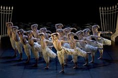 Check out our review of Matthew Bourne's Swan Lake at Milton Keynes Theatre http://www.mkweb.co.uk/Whats-On/Theatre/Review-Matthew-Bournes-Swan-Lake-at-Milton-Keynes-Theatre-20140129154725.htm