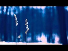 Abraham Hicks ペ Bask your way into your Vibrational Vortex - YouTube