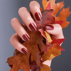 Take your manicure into fall with rich shades of orange, red, and gold.
