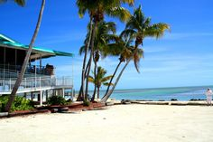 Lazy Days in Islamorada.  Where you drink rum and then crash out on the hammocks in the back.