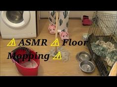 Requested video in this video with the help of my Son i mop my floors , i hope you all enjoy the video and i send you all my love and hugs xxxxxxxxxxxxxx ⚠️⚠. Cleaning My Room, I Sent You, Love Hug, Asmr, The Help, Flooring, Pug, Autonomous Sensory Meridian Response, Wood Flooring