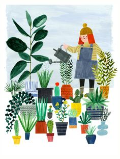 GRACE easton  illustration succulents and cacti
